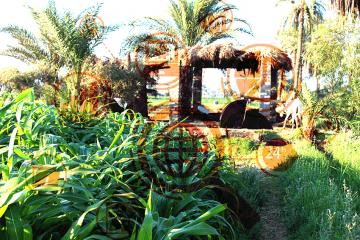 Planning Ministry targets EGP 34.5bn agriculture, irrigation investments in FY 2020/21